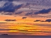 132-Welsh-Sunset-from-Broad-Haven
