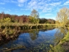 181-Barnsley-Canal