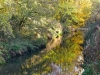 207-River-Dearne-in-Autumn