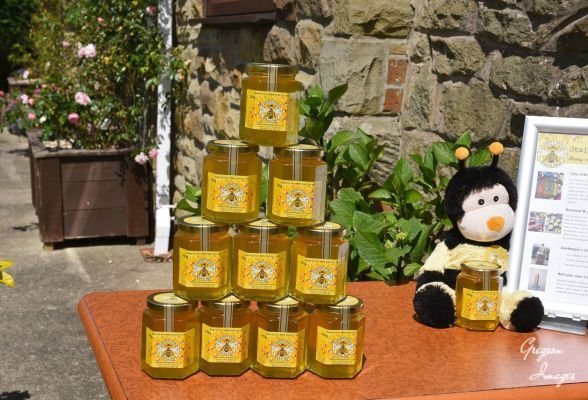 66-Yorkshire-Honey-for-Sale