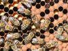 42-Bees-buzzing