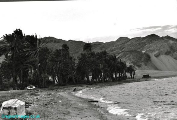 05bw-bedouin-village-dahab