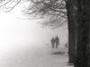 17bw-figures-in-fog-wengen