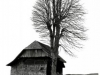 21bw-house-and-tree-in-switzerland