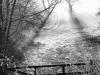 33bw-morning-mist-cawthorne