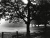 34bw-morning-sunlight-weybridge