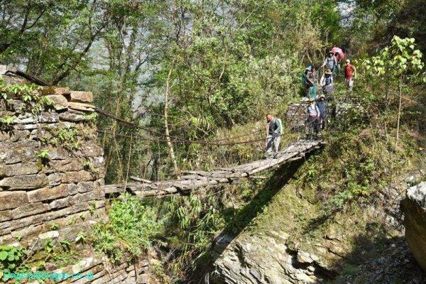 325-The-bamboo-bridge