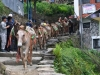 157-A-donkey-train-coming-down-the-village