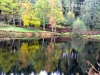 212-Reflections-of-Autumn-around-Codbeck-Reservoir