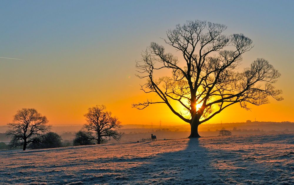 005.-Frosty-Sunrise-Cawthorne