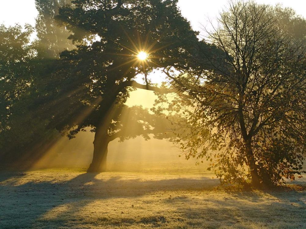 007.-Sunbeams-at-Sunrise
