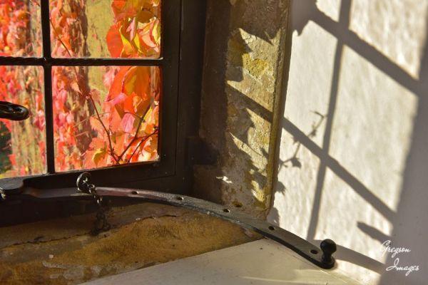 076-Autumn-Window-