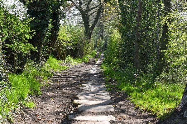 057-The-old-lane-at-Gunthwaite