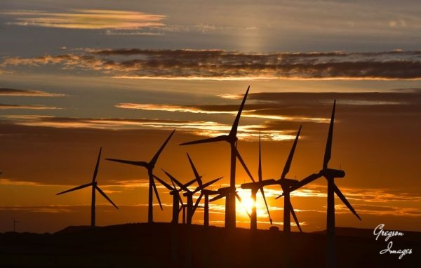 1_496-Windmills-Sunset