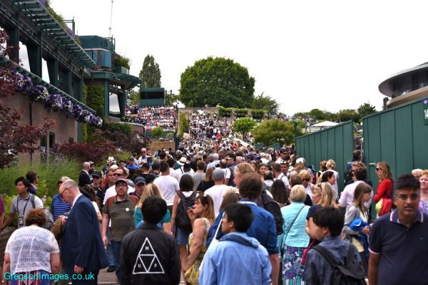 44-Wimbledon-crowds-2019